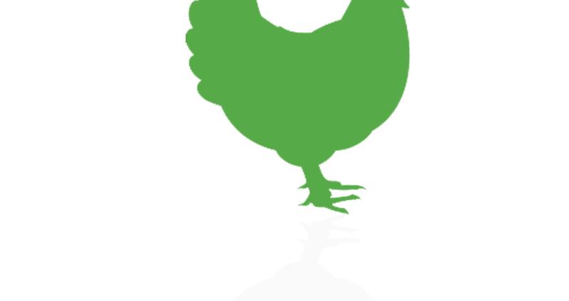 نرم افزار حسابداری هلو خوراک دام و طیور